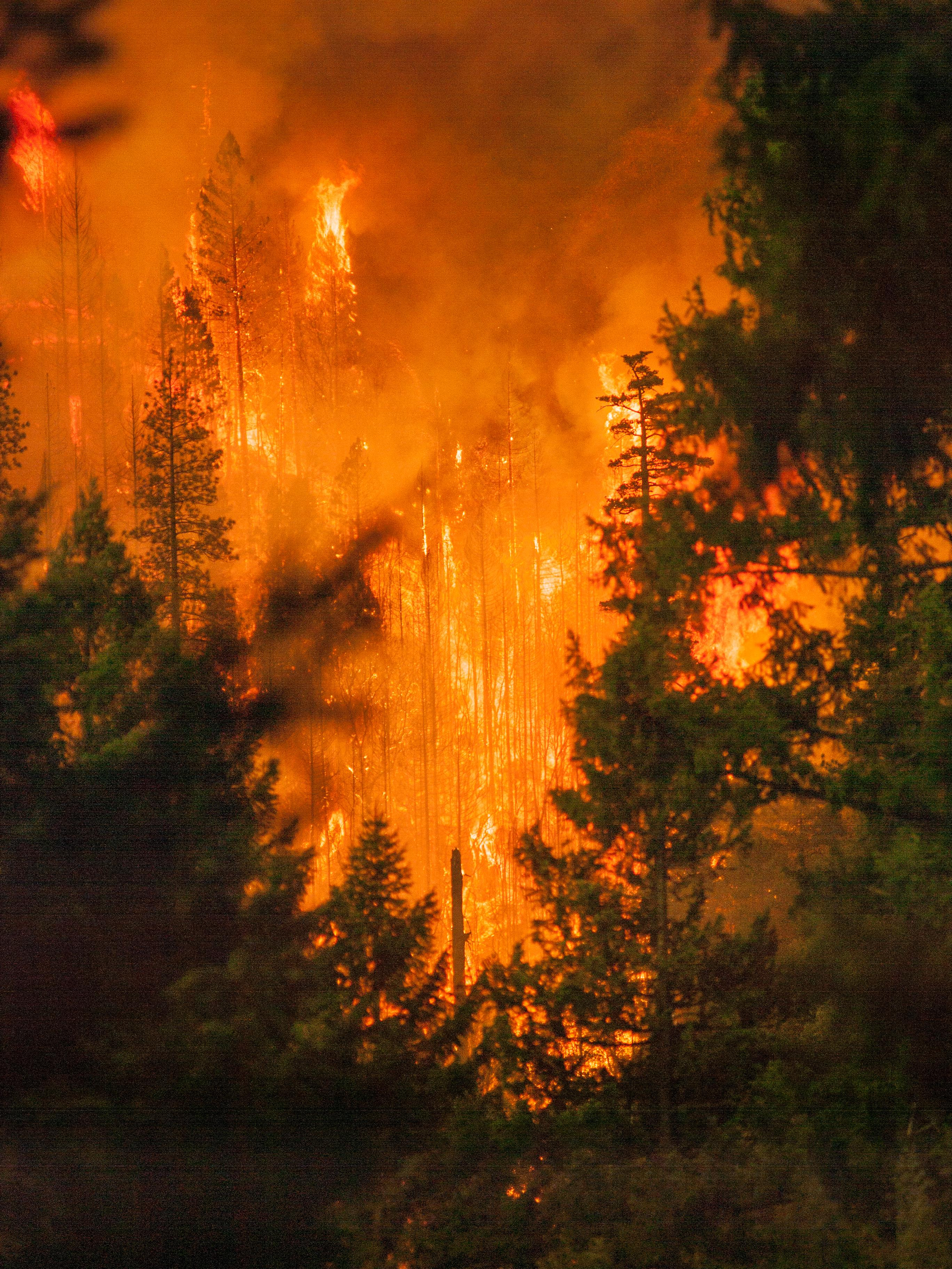 By United States Forest Service - https://inciweb.nwcg.gov/incident/photograph/5927/6/, Public Domain, https://commons.wikimedia.org/w/index.php?curid=71039420